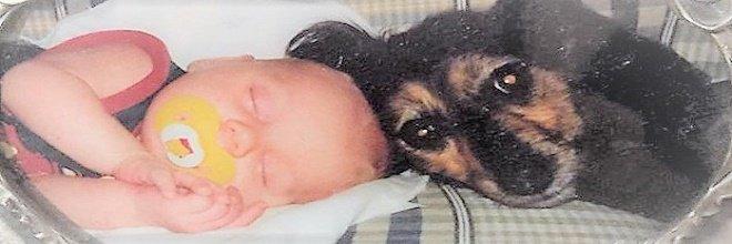 10+ obrázků PŘED a POTÉ: společné dospívání psů a páníčků