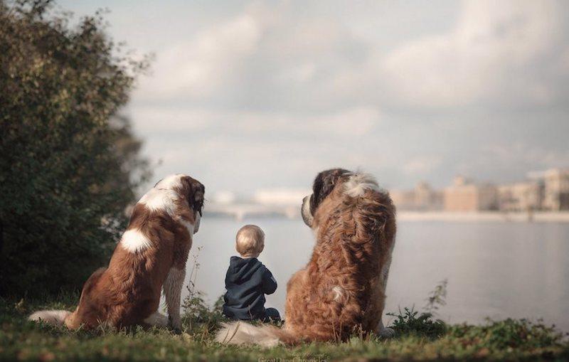 Dítě se psem, léto