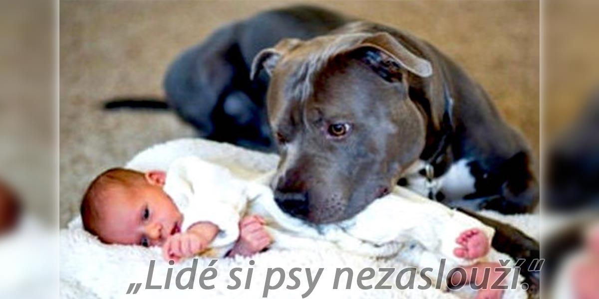 Názor: Lidé si psy nezaslouží a nezáleží na plemeni