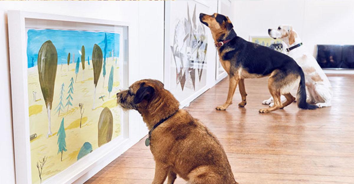 Celosvětově první výstava umění pro psy