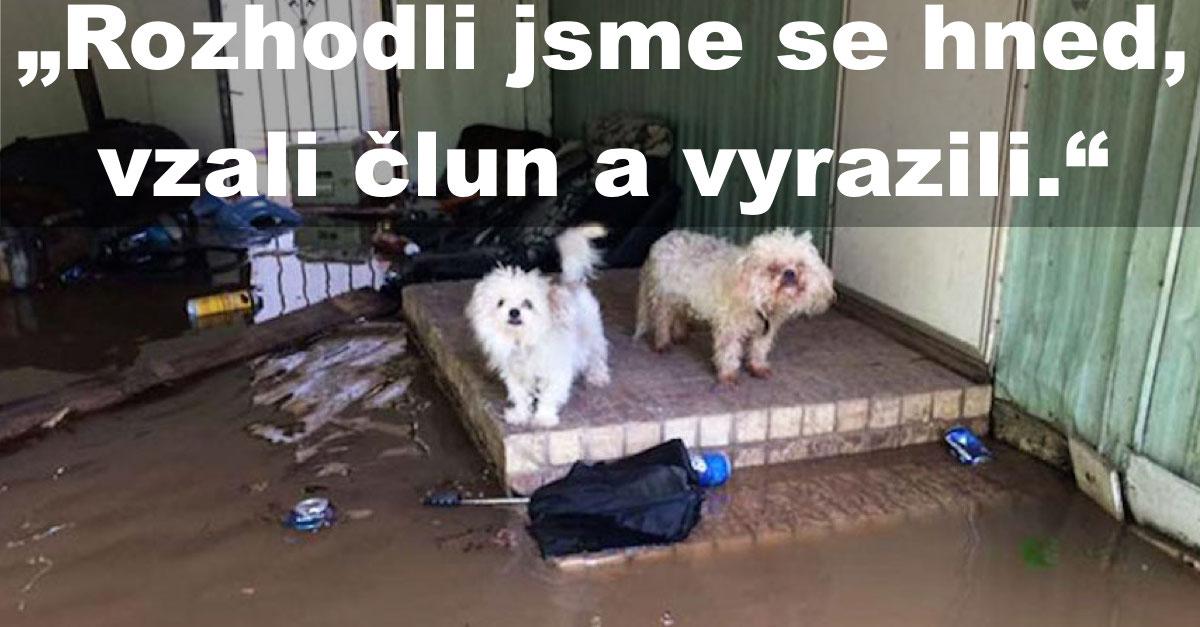 Otec se synem osvobodili 30 psů během povodní