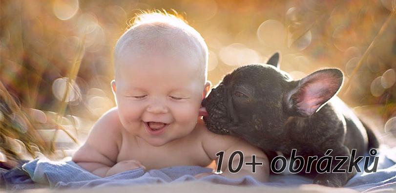 Dítě a buldoček se narodili ve stejný den, myslí si, že jsou sourozenci a vše dělají společně