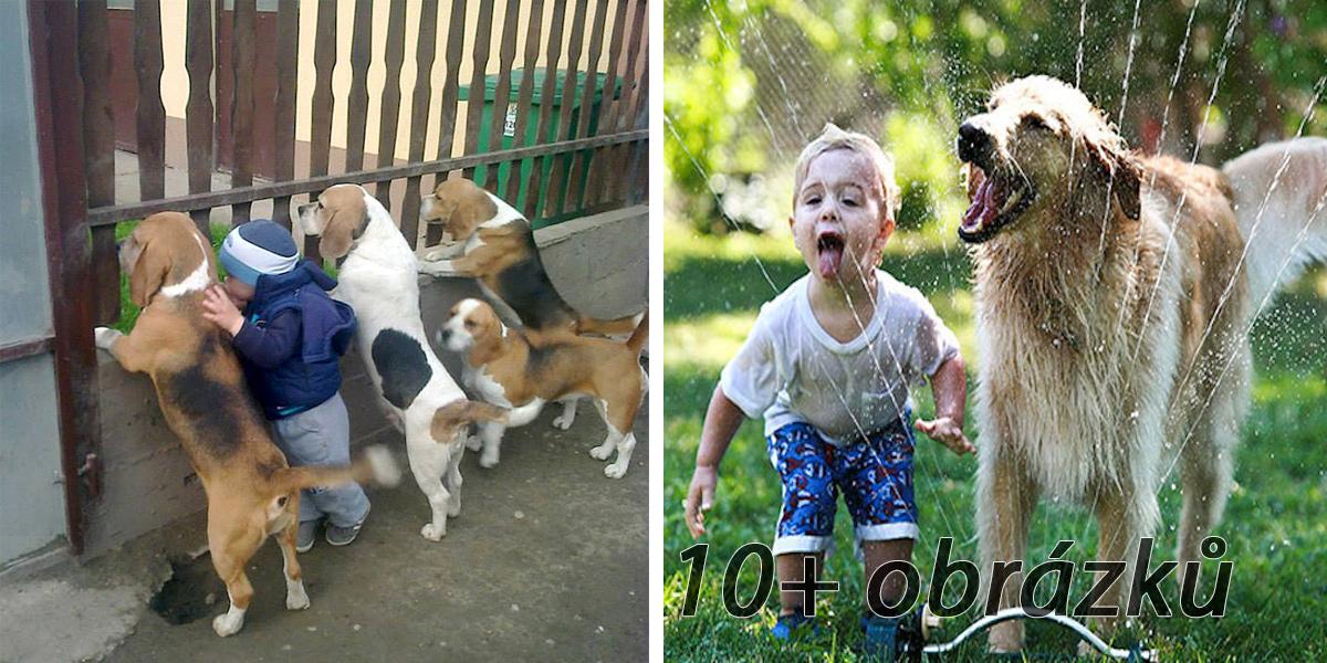 20+ úžasných fotografií, které dokazují, že Vaše dítě potřebuje štěně