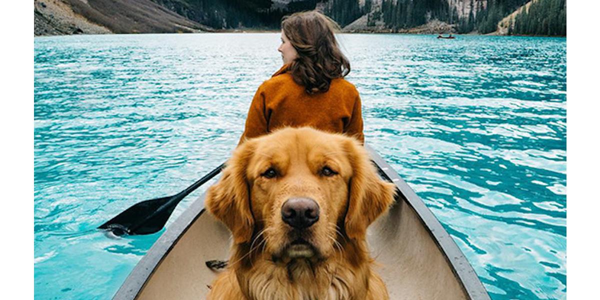 Vzali psa na epickou výpravu, aby dokázali, že psi jsou nejlepší parťáci na cestách