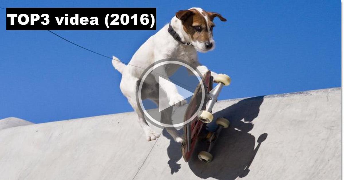 3 nejlepší videa za rok 2016