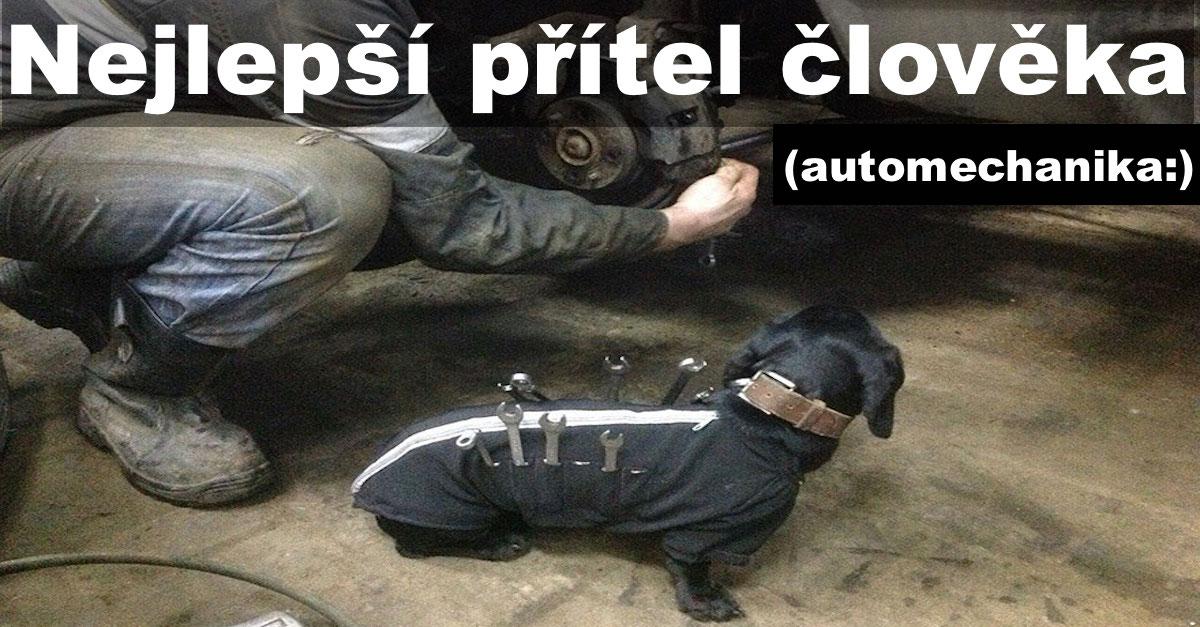Rozkošný asistent: Malý psí pomocník pomáhá opravovat auta