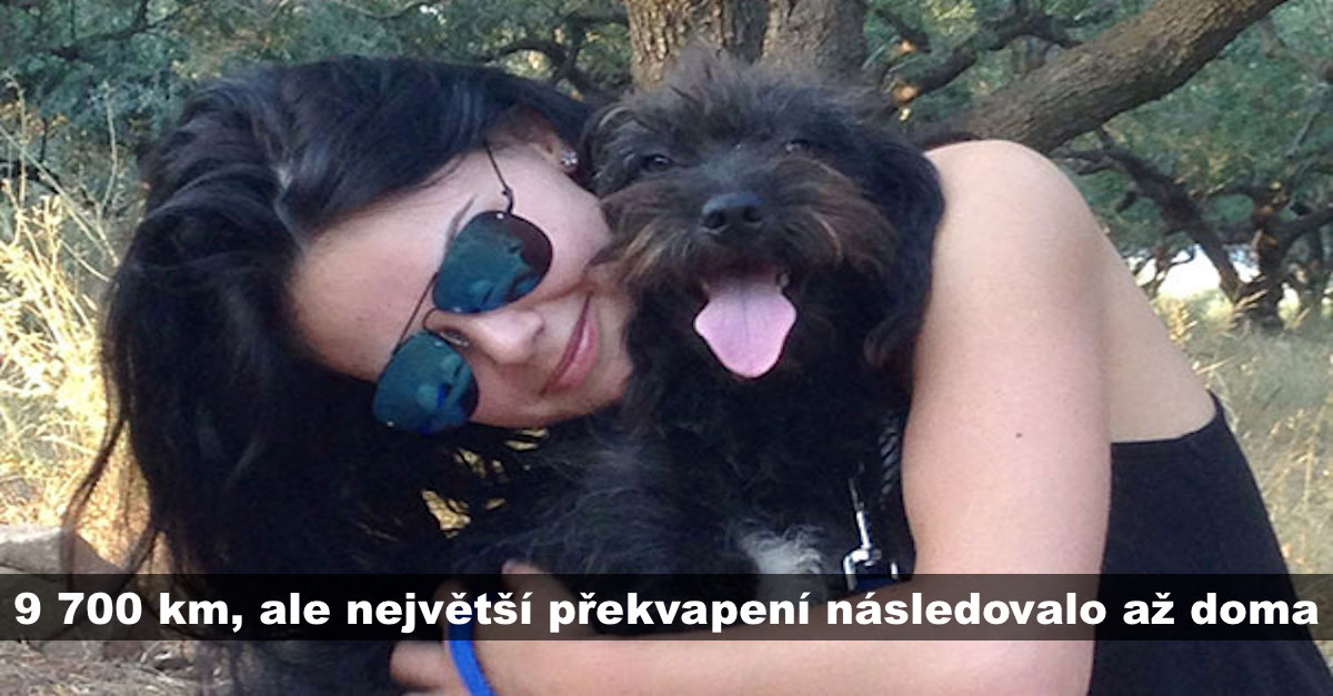 Žena letěla 9700 km, aby adoptovala psa, který jí zachránil před útokem, po týdnu ale přišlo překvapení…