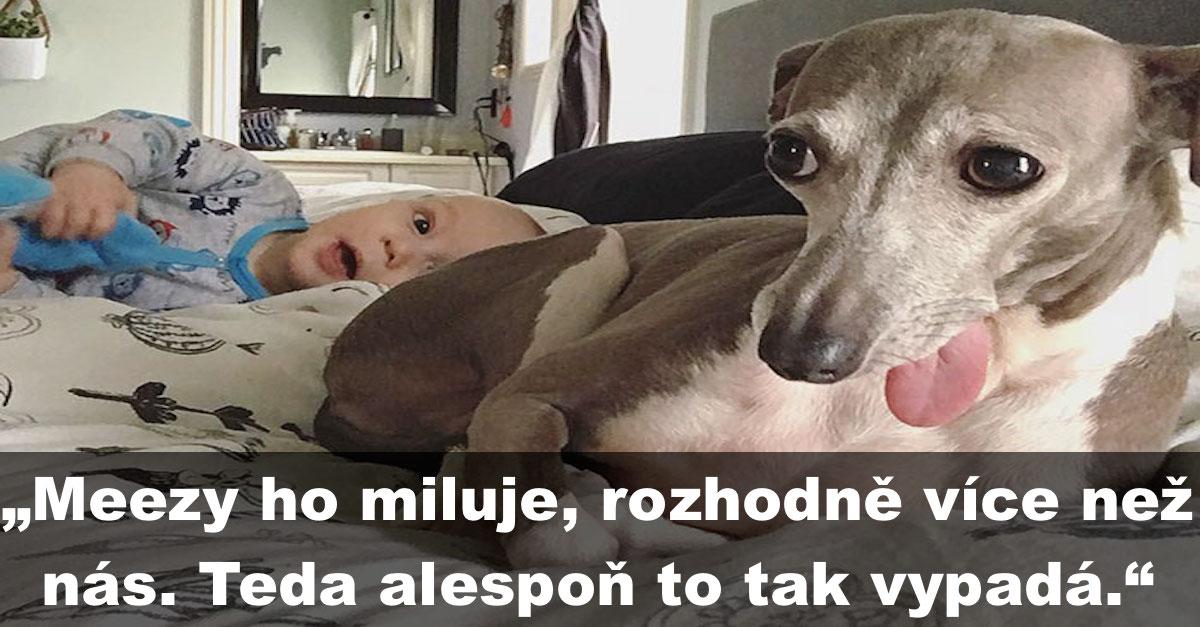 Nikdo nevěděl, jak pomoci psovi, který se všeho bál. Ale pak na svět přišel malý bráška…