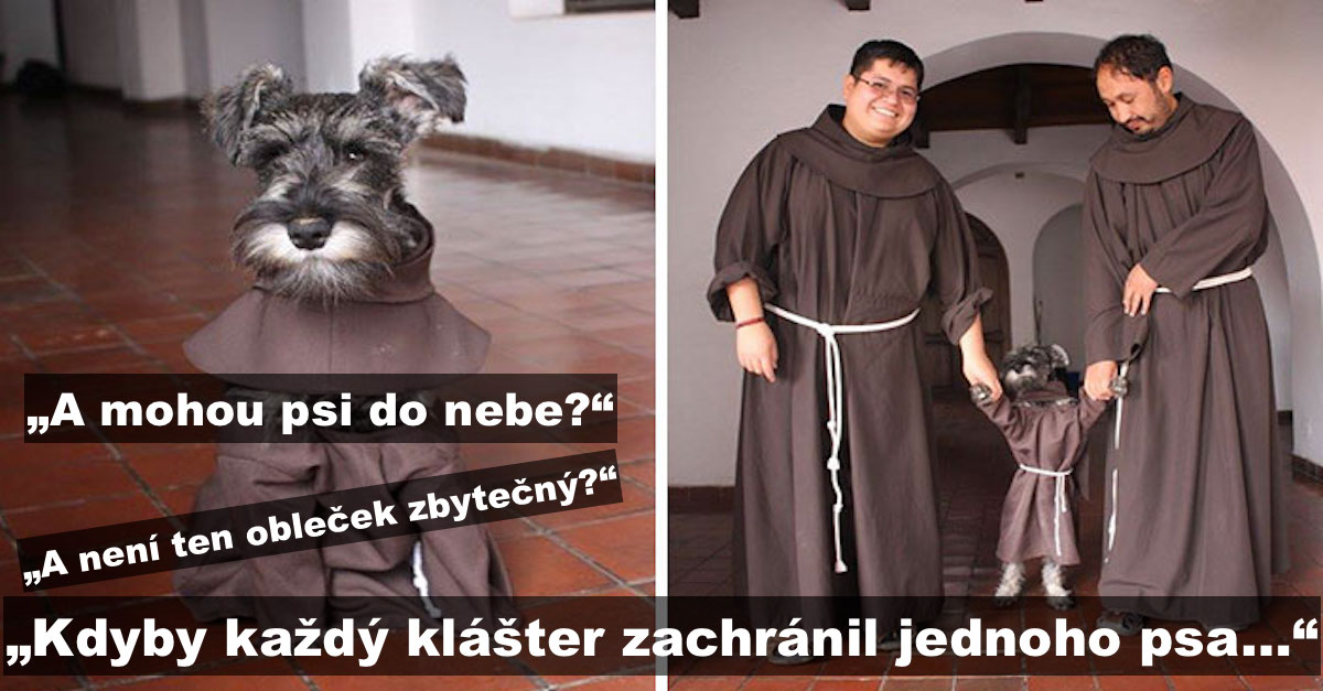 Klášter adoptoval psa, který si nyní užívá život mnicha