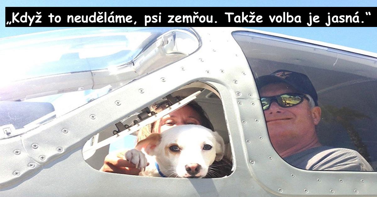 Piloti převáží psy z útulku, aby je zachránili před eutanázií