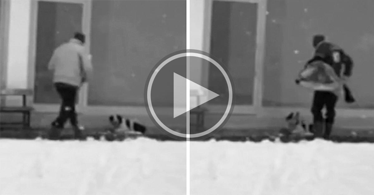 Bezpečnostní kamera zachytila muže, který udělal tu nejúžasnější věc pro mrznoucího psa