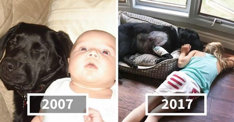 Řekla jsem své sestře, že NEsmí mít psa, když právě porodila dítě, ale ona neposlechla
