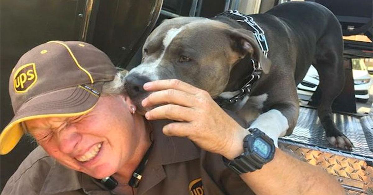 Tahle řidička UPS právě adoptovala pitbula, protože jeho majitel odešel…