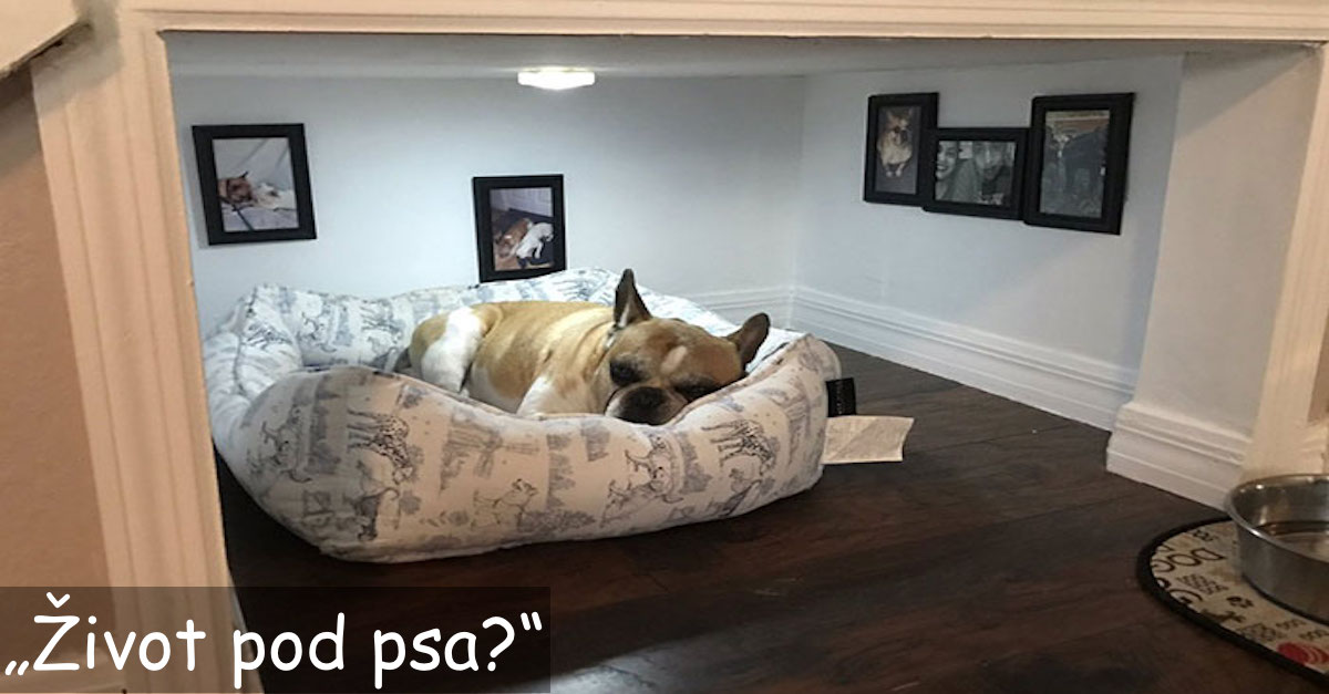 Muž postavil dokonalý pokojíček pro svého nejlepšího přítele