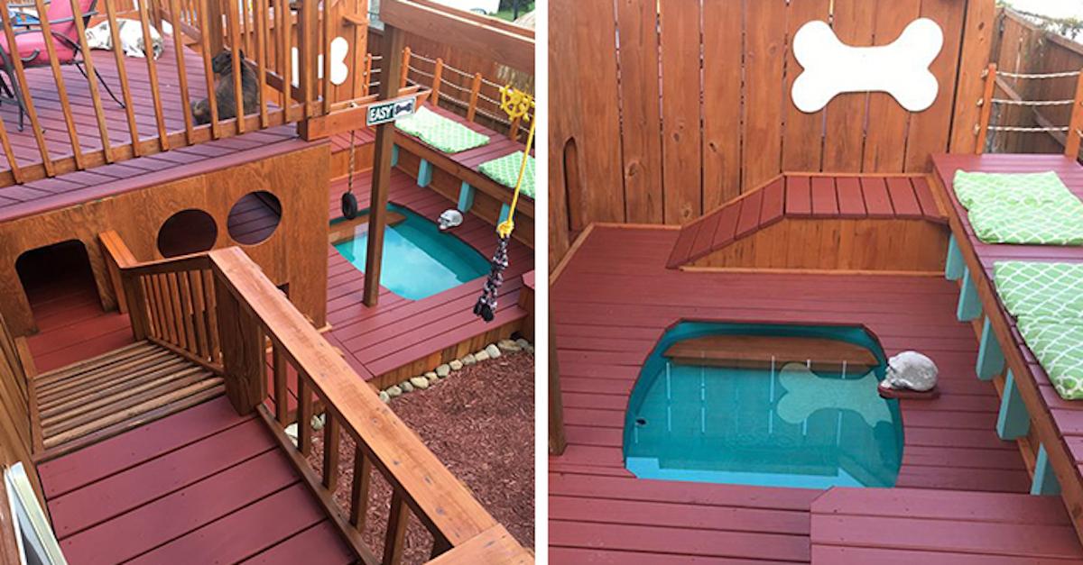 Psí nadšenec proměnil svou zahradu ve psí ráj se soukromým bazénem pro 4 psy