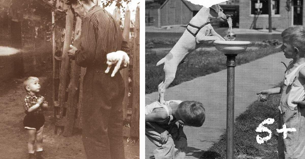 Historické obrázky, které nás dojaly k slzám