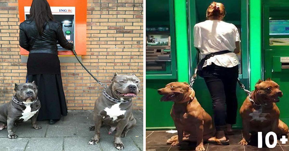 Jak vypadá nejlepší ochrana u bankomatu? (10+ obrázků)