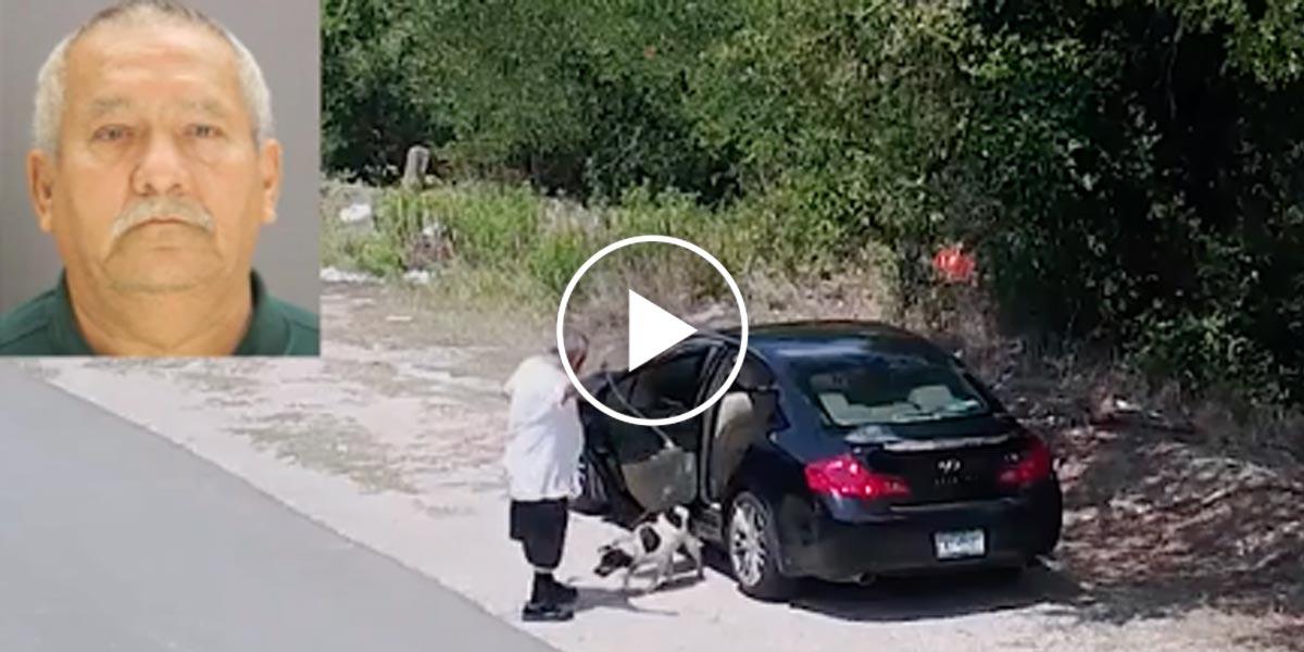 Příběh odhozeného psa u silnice má překvapivě dobrý konec