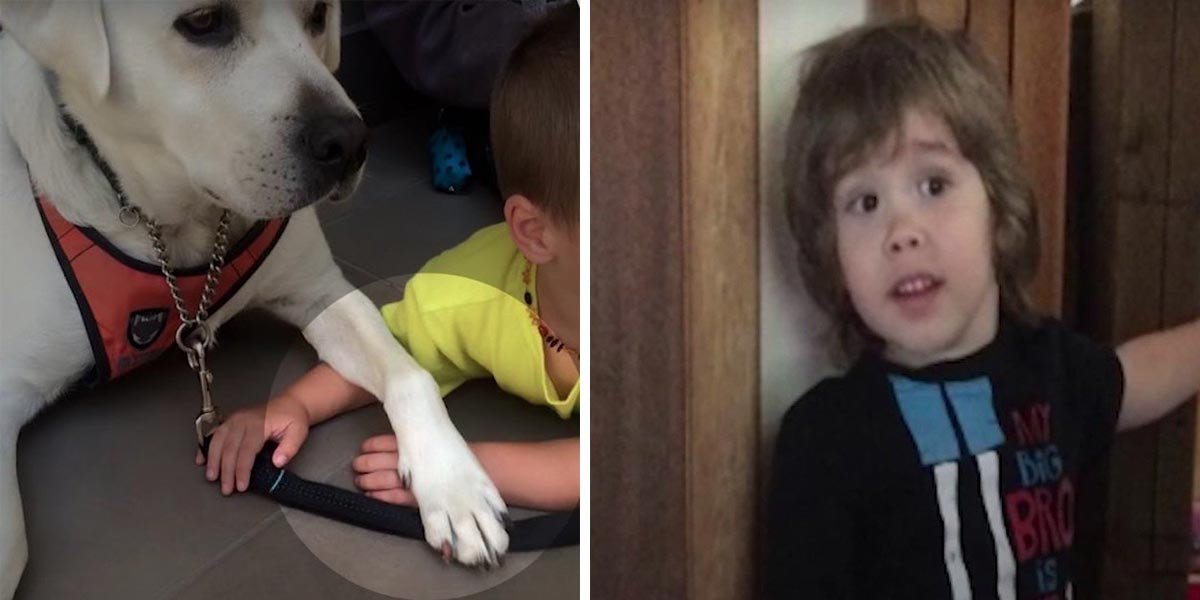 Chlapec s autismem dostal psa, který změnil celý jeho život