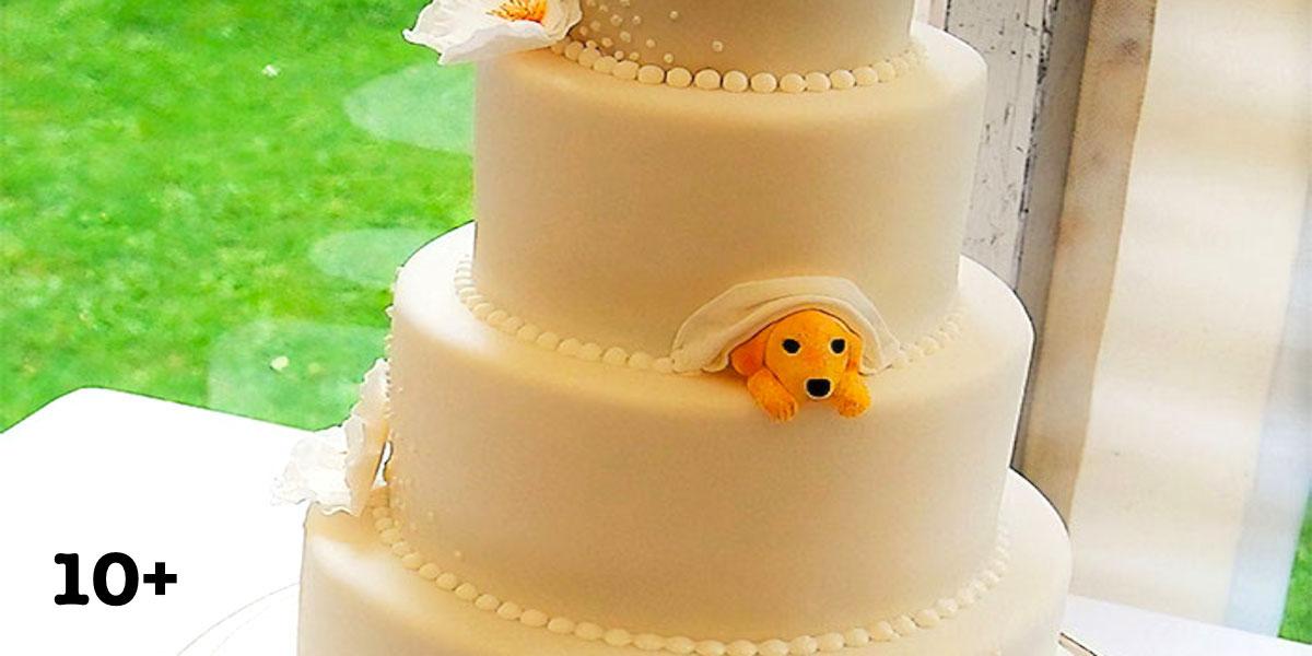 Manželské páry našly způsob, jak svého nejlepšího přítele zahrnout do svého svatebního dne, výsledky jsou psúžasné