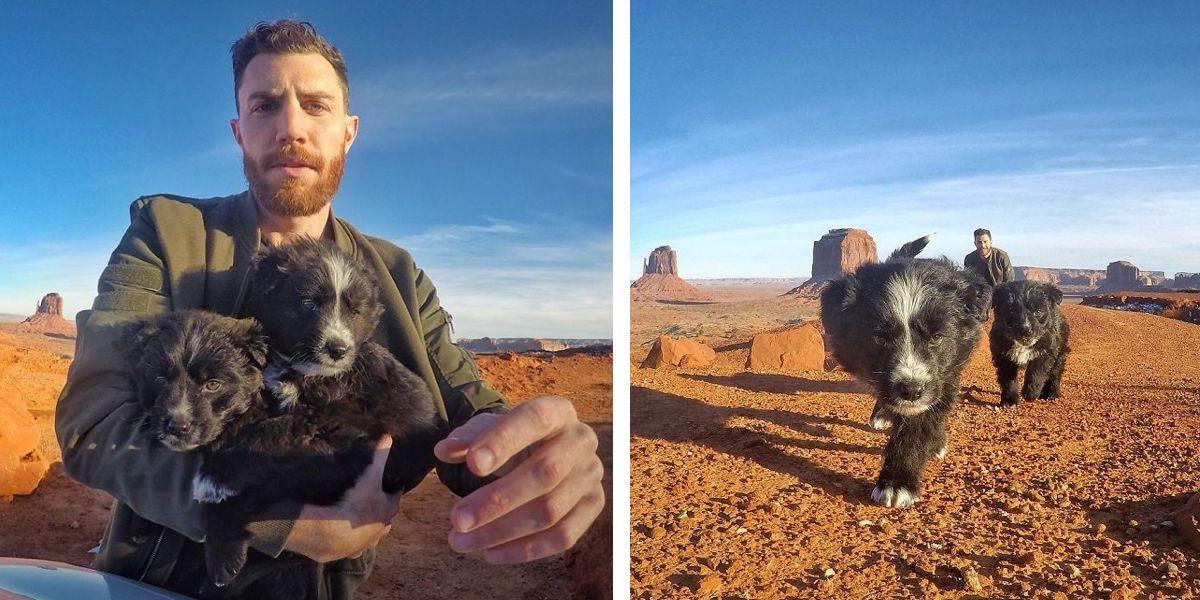 Muž během dovolené našel v poušti dvě štěňata, a tak je vzal na 40 000 km výlet