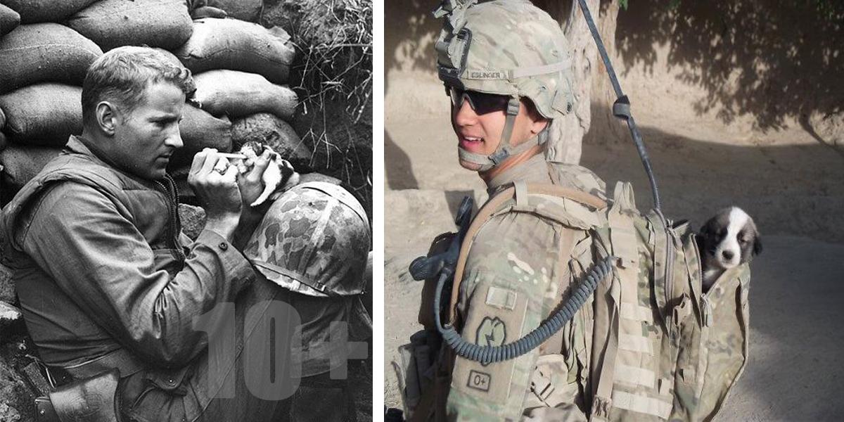 10+ vojáků, kteří si během mise našli svého nejlepšího přítele