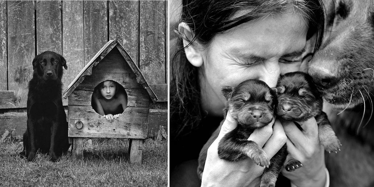 Tátovy rustikální fotografie jeho psů a rodiny