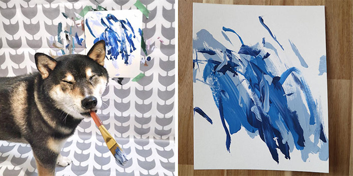 Naučili Shibu malovat, své obrazy prodala za více než 100 000 Kč