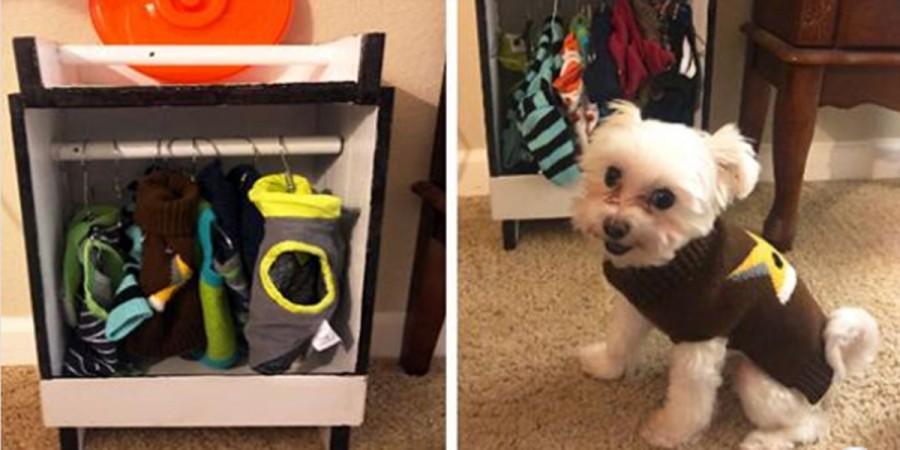 Pes si zamiloval oblečky natolik, že mu jeho děda vyrobil malý šatník