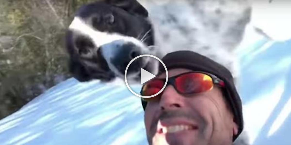 Video muže na saních se svým pes Vám zaručeně zlepší den