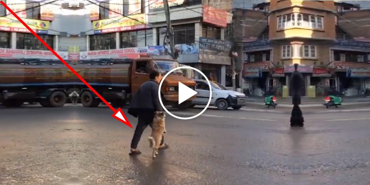 Dokonalý pes, který přes silnici chodí zásadně za ruku se svým taťkou