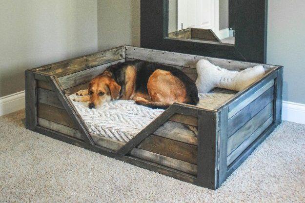 Jak vyrobit pelíšek pro psa svépomocí