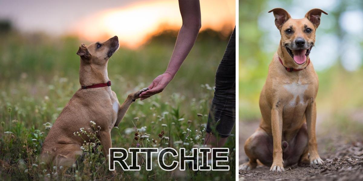 Ritchie už 2 roky hledá svou rodinu