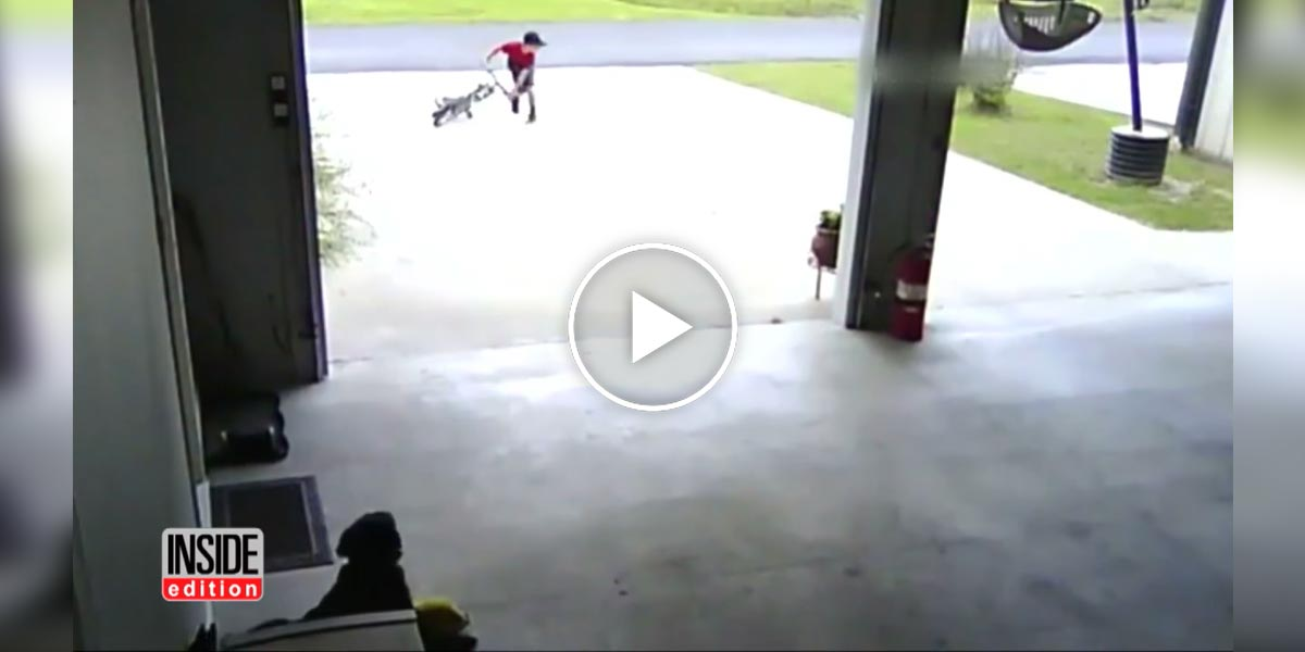 Tyhle záběry kluka a psa od sousedů ukazují lepší lidskou stránku