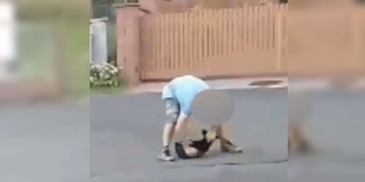 Za zmlácení psa na veřejnosti hrozí tyranovi z Jáchymova pokuta