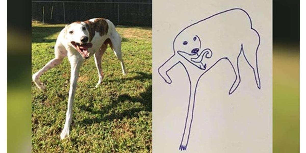 Chtěl si na památku nakreslit svého psa, takhle to dopadlo