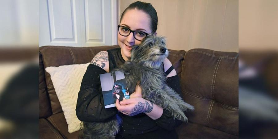 Adoptovala starého psa, protože vypadal stejně jako její pes z dětství, pak zjistila, že jde o stejného psa