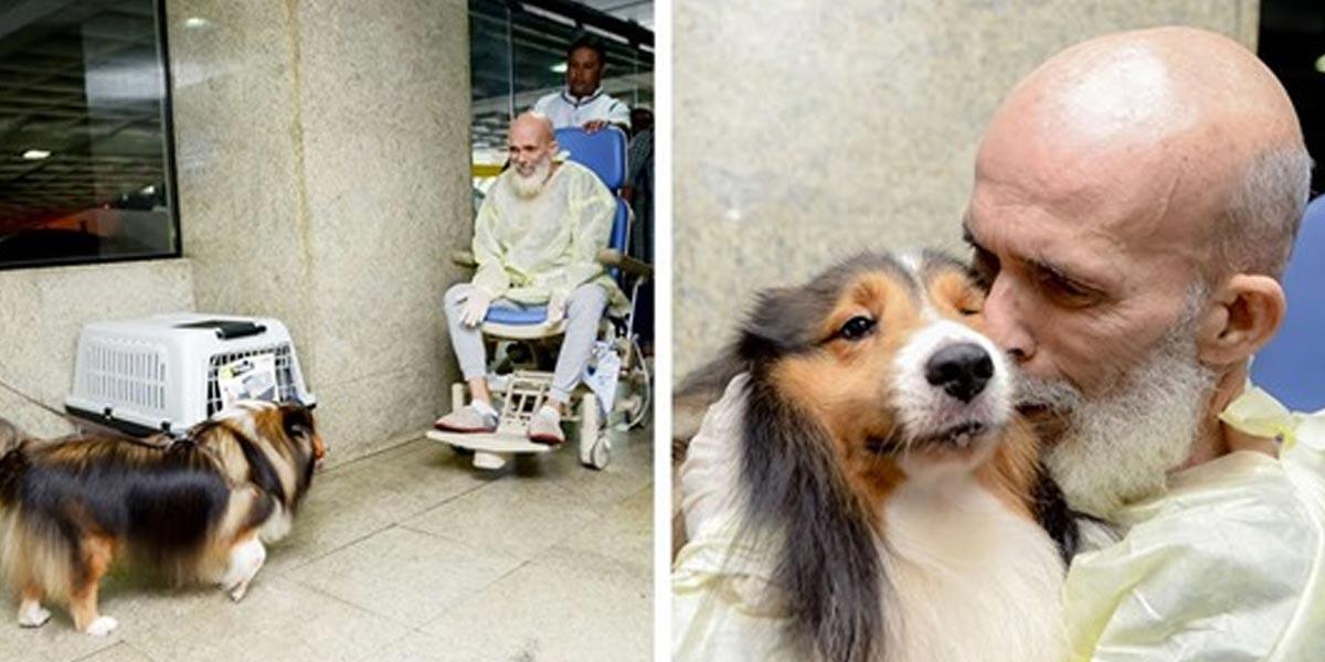 Doktor byl překvapený, jak se zlepšil stav pacienta po návštěvě psa
