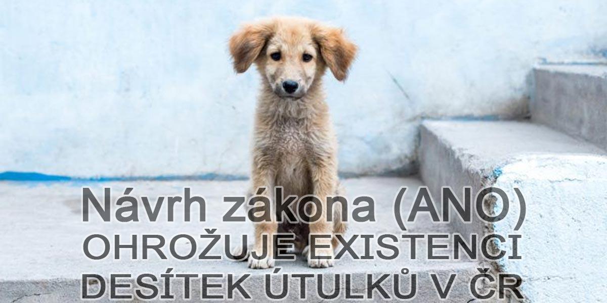 Desítky útulků v ČR možná zaniknou, může za to připravovaná novela zákona