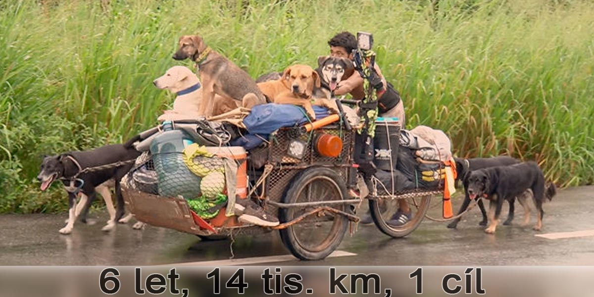 Potkal jsem muže bez domova, který cestou po Mexiku zachraňuje stovky psů. Jeho příběh mě dojal