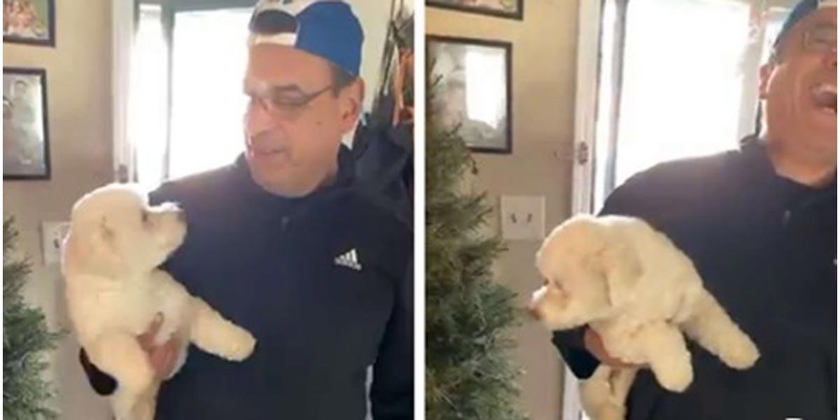 Tenhle muž šel ostříhat svého psa, ale domů se vrátil s jiným