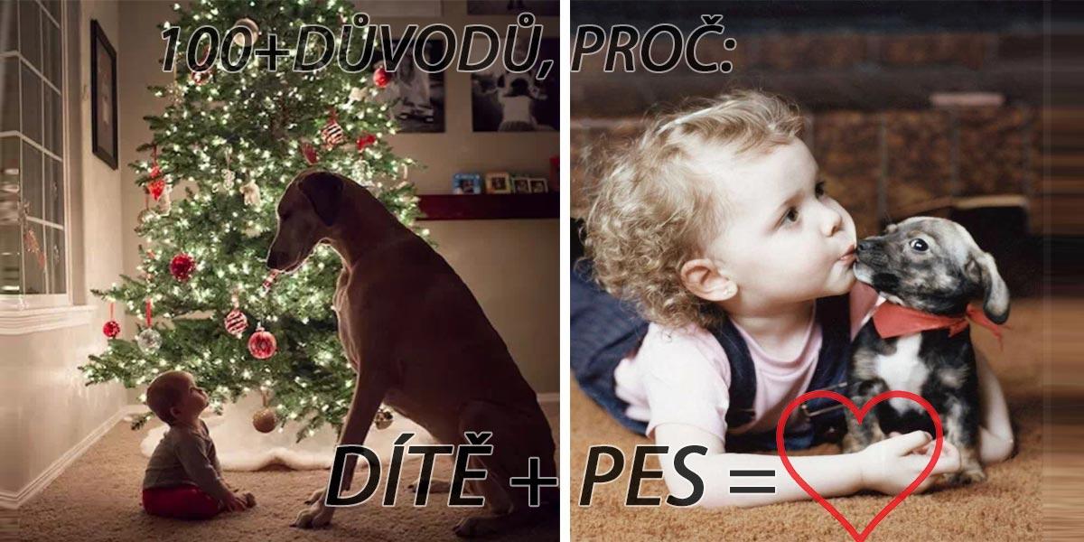 100+1 důvodů, proč dítě potřebuje psa