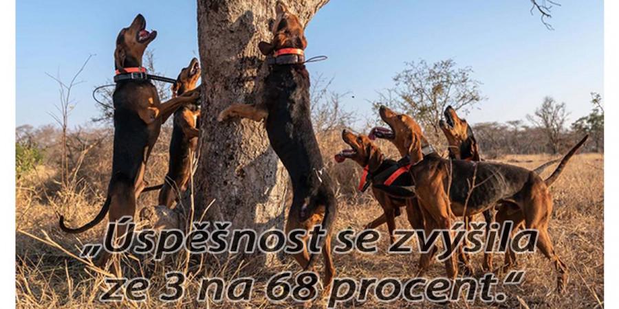 Pracovní psi zachránili 48 nosorožců před pytláky. Úspěšnost se zvýšila 22x.