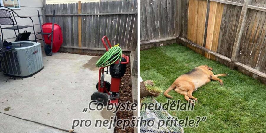 Adoptovaný pes žil celý život uvnitř bytu. Tak jsme mu postavili vlastní zahradu.