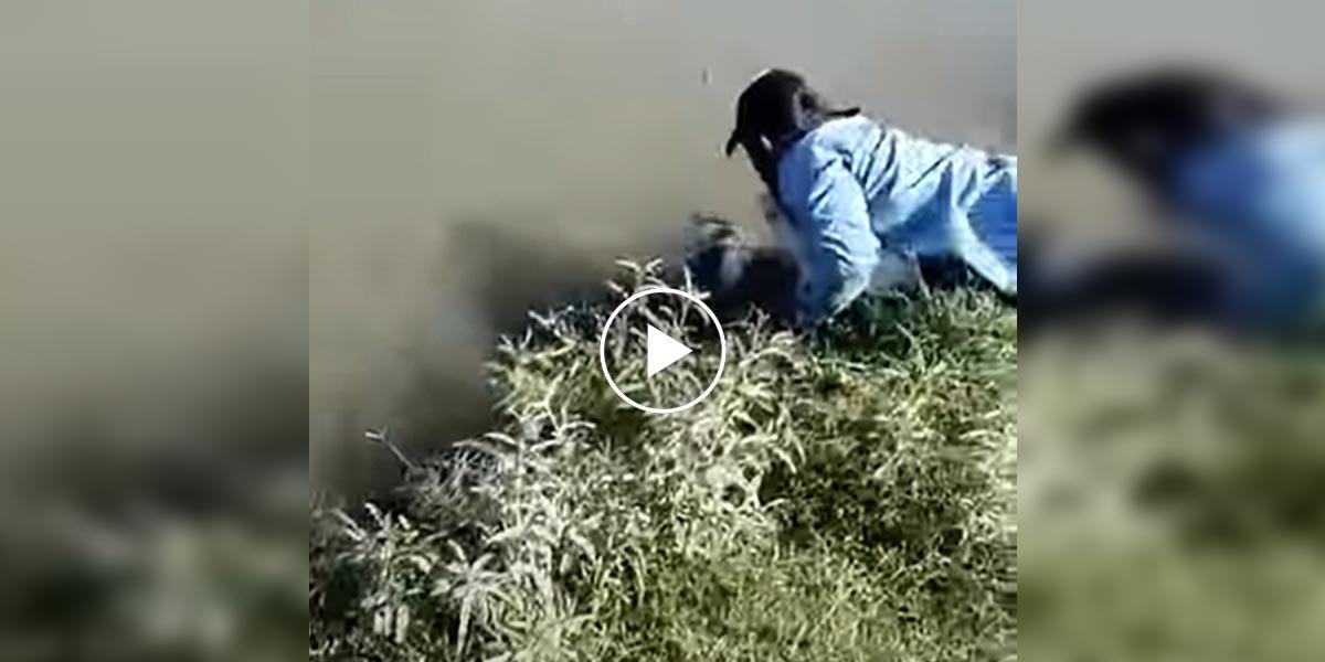 Štěně uvízlé ve vodním kanále dalo svému zachránci to nejsladší poděkování