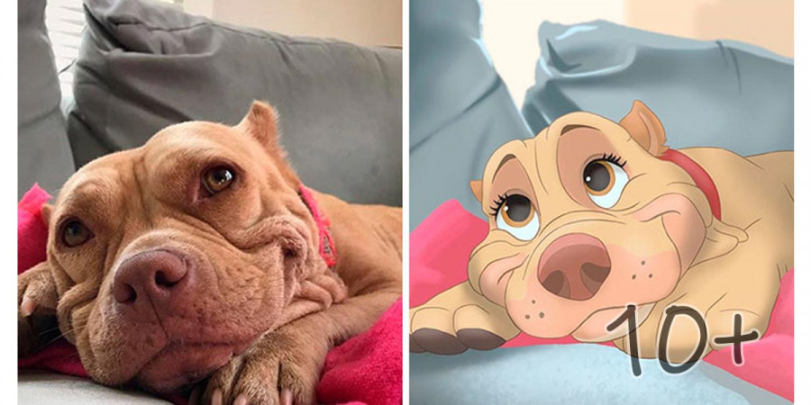 Lidé posílají fotky svých mazlíčku umělci, který z nich vytvoří dokonalé Disney postavičky