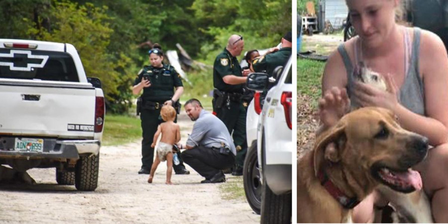 Dítě (3) s autismem našel jeho pes o několik hodin dříve než policie. Dovedl ho blíže k domovu.