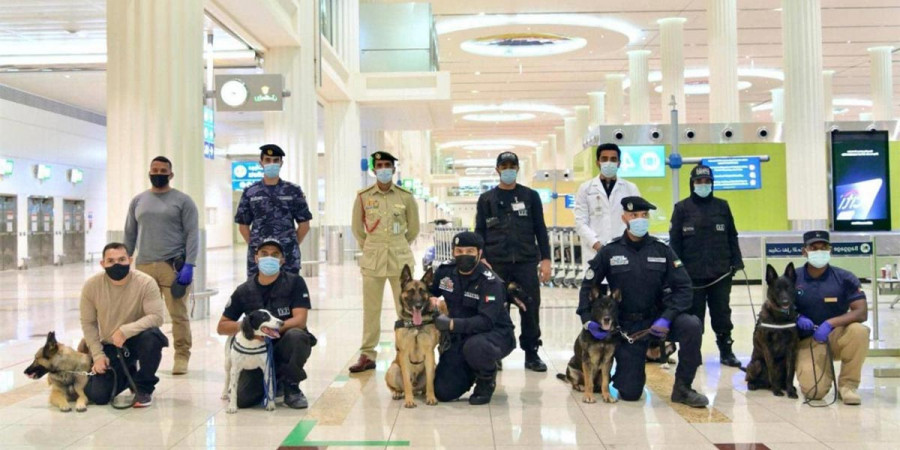 Dnes začali psi na finském letišti vyhledávat lidi pozitivní na COVID-19