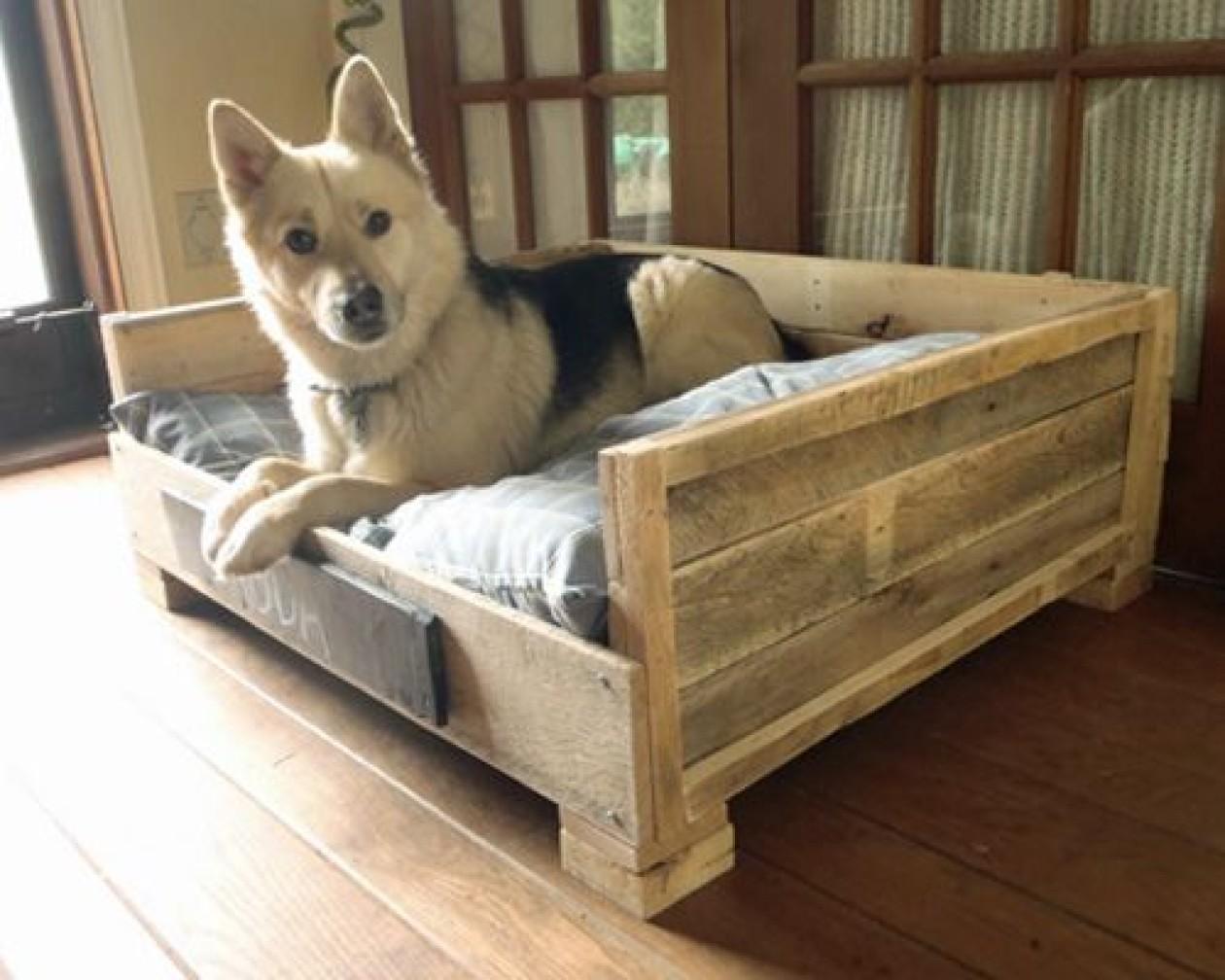 Jak jsem vyráběl pelíšek pro našeho psího miláčka