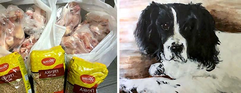 Prodej obrazu na pomoc psům